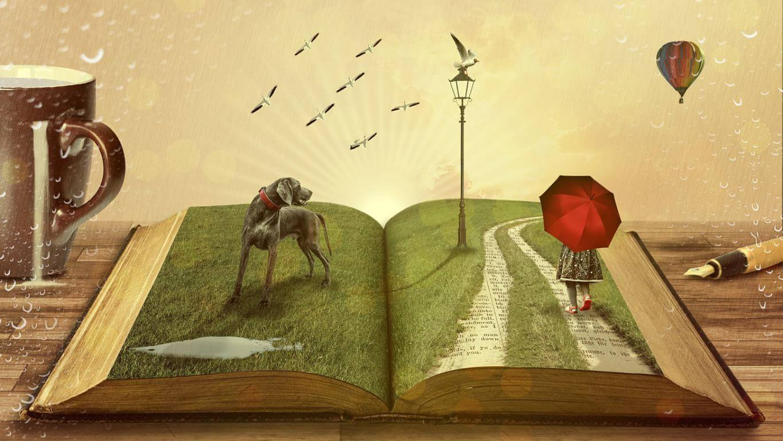 Escribir libro