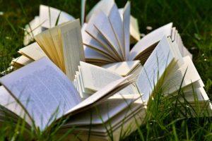 ¿Por qué otros colegas han podido escribir un libro y tú no?